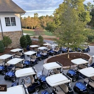We Rent Hundreds of Golf Carts and Utility Carts